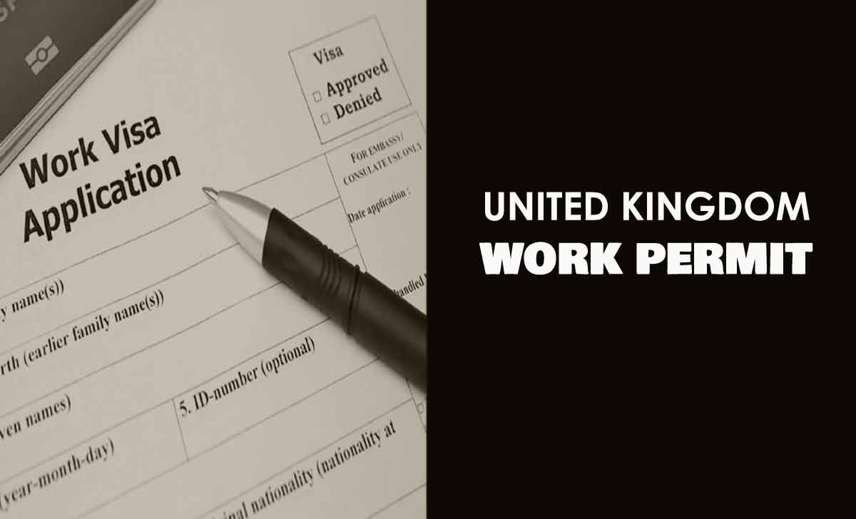 UK Visa Types - Which UK Visa category Best Suits Your Need?